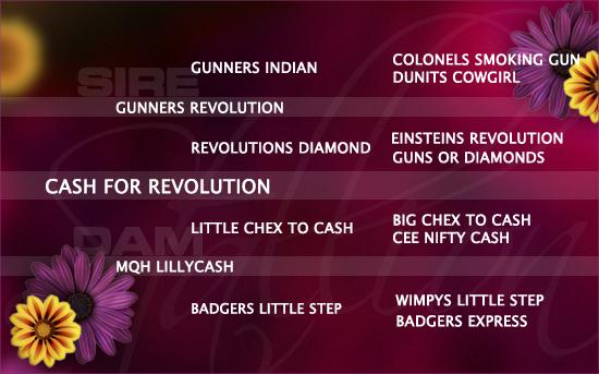 2020-04_sa_pedigree_cash-for-revolution